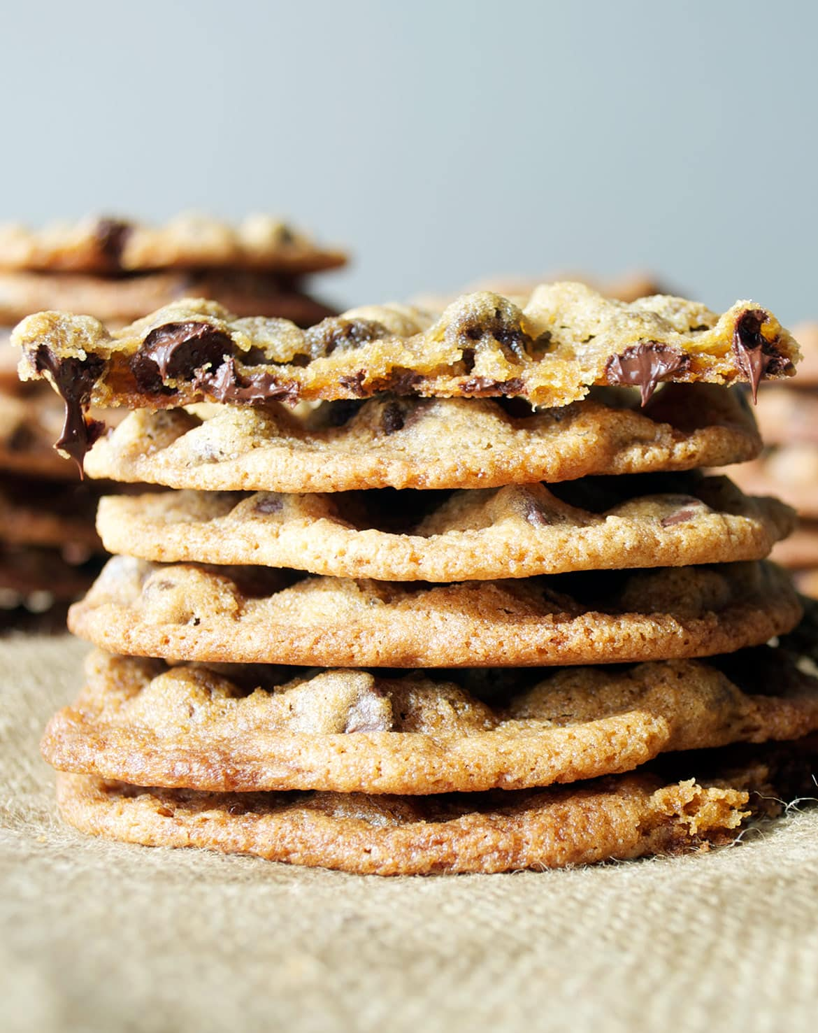 chewy chocolate chip cookies | TasteSpotting