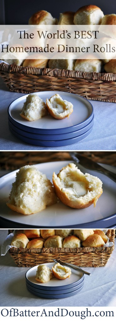 Homemade dinner roll recipe