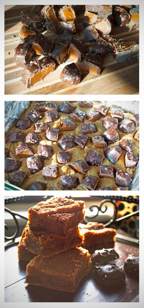 Salted Chocolate Caramel Blondies