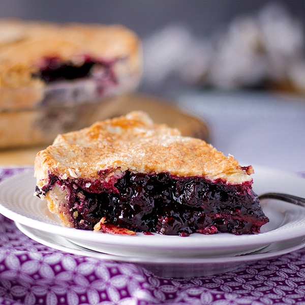 A slice of homemade blueberry pie.