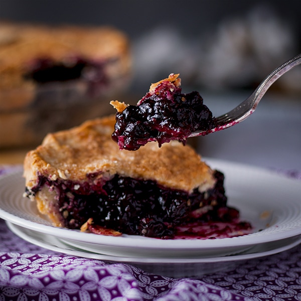 Taking a bite of homemade blueberry pie.