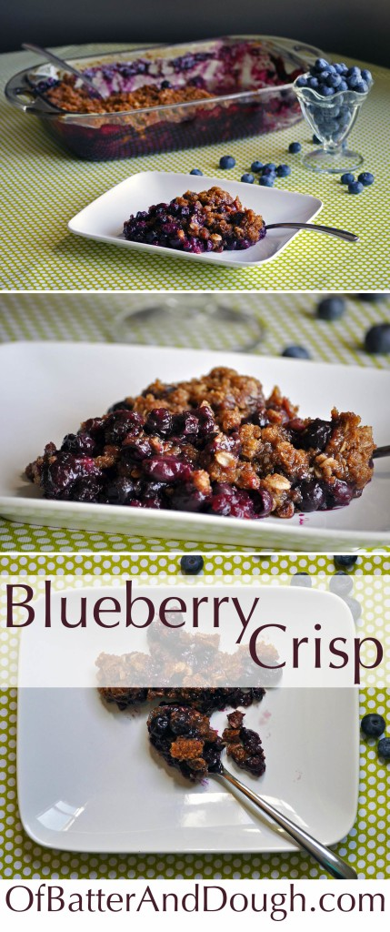 Blueberry-crisp-pin