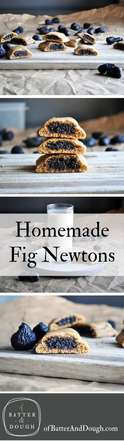Homemade Fig Newtons | Fig Cookies | ofbatteranddough.com
