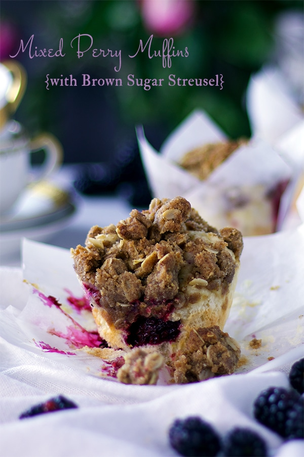 Mixed Berry Muffin with Brown Sugar Streusel