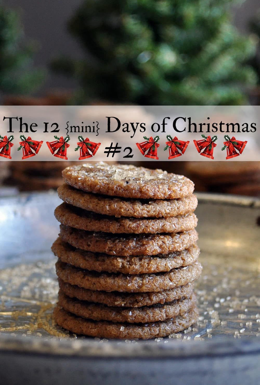 Mini Sorghum Ginger Cookies | The 12 mini days of Christmas | ofbatteranddough.com