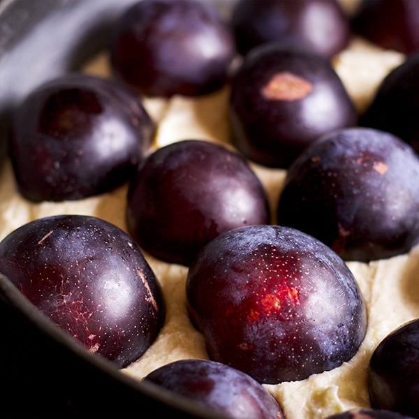 Laying plums over the top of an almond plum cake before baking.