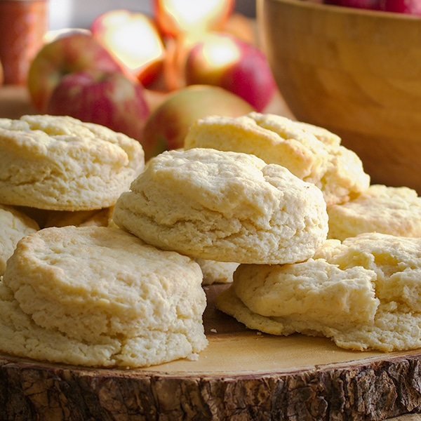 A plate full of simple cream biscuits