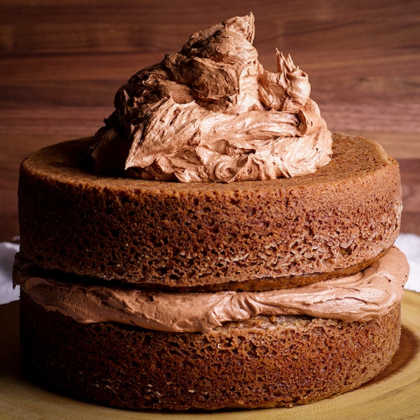 Two layers of spice cake, with chocolate buttercream in between.